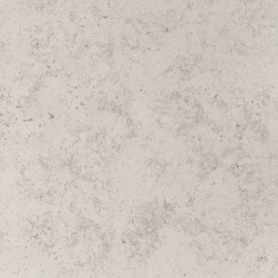 Steenbok Florida Tampa Grey