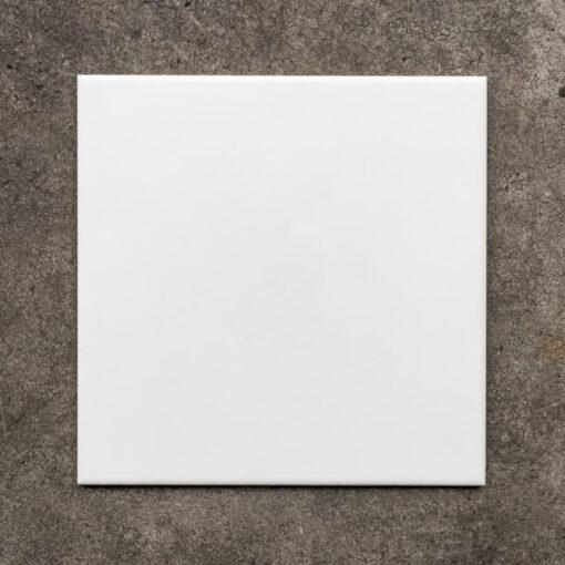 Steenbok Wand 18902 White Glossy 26x26cm_3